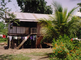 Rural housing in  Ecuador